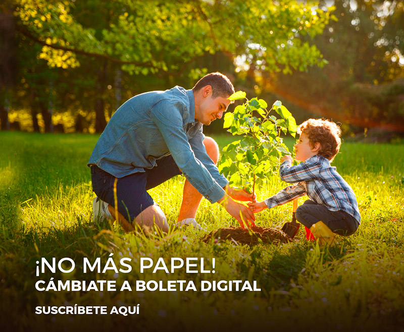 ¡No más papel! cámbiate a boleta digital